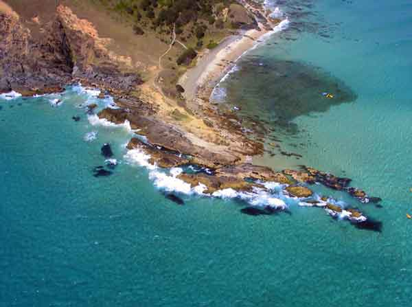 cape Byron Whale Watching place